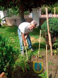 Pedro en su labor diaria en la huerta de la residencia